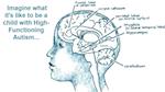Illustration of the brain
