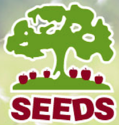 Image of a tree over the word SEEDS